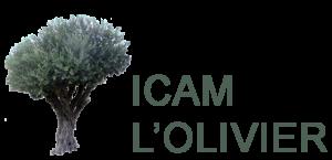 Institut des cultures arabes et méditerranéennes  (ICAM)