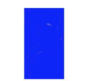 logo-pavillon-bleu-300x277s
